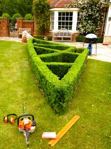 Tree And Hedge Services Green Nature Ltd